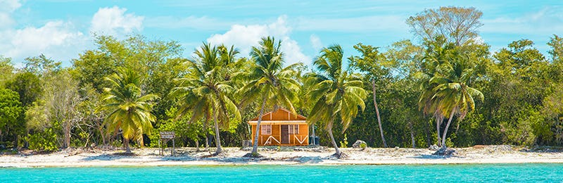 Caribbean white sand beach with hut and palm trees