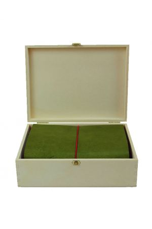 Paper Republic Grand Voyageur Leather Travel Notebook Starter Kit - Green