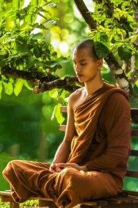 A Buddhist monk meditating under a tree